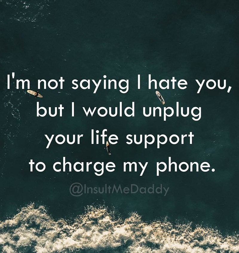 Text - I'm not saying I hate you, but I would unplug your life support to charge my phone. @InsultMeDaddy