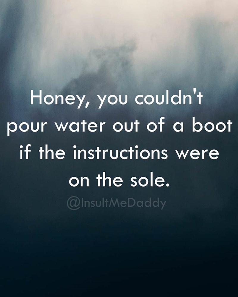 Text - Honey, you couldn't pour water out of a boot if the instructions were on the sole. @InsultMeDaddy
