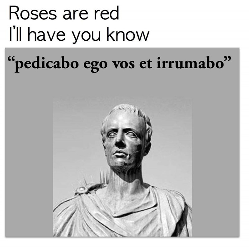"""meme - Text - Roses are red T'l have you know """"pedicabo ego vos et irrumabo"""""""