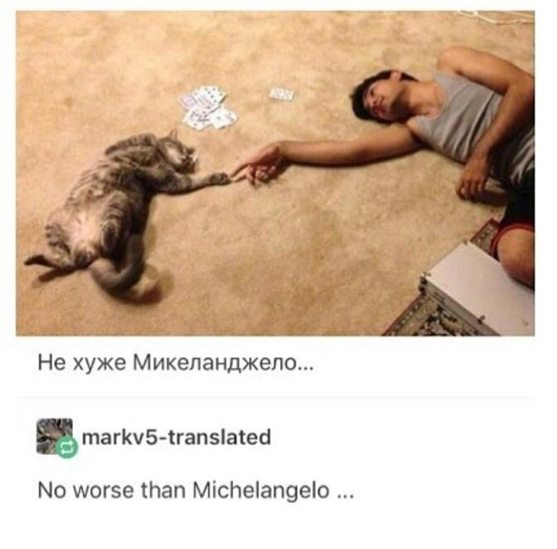 "Tumblr post with picture of man and cat touching hands recreating Michelangelo's ""The Creation of Adam"""
