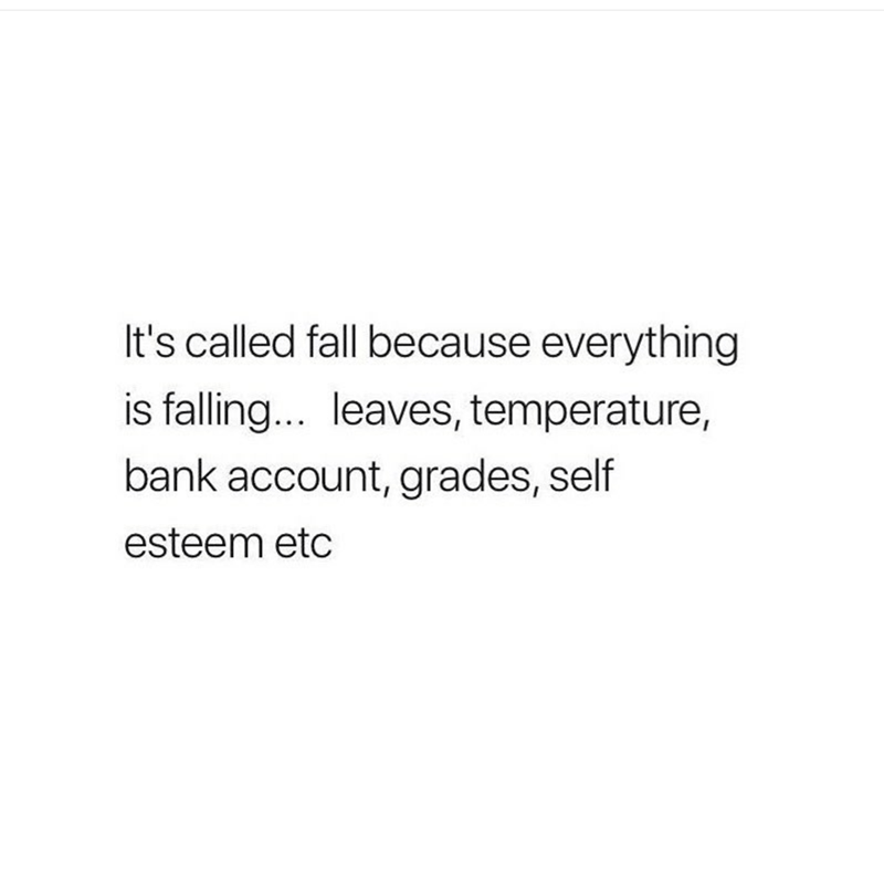 meme about the fall
