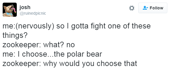 tweet of trying to fight animals at the zoo