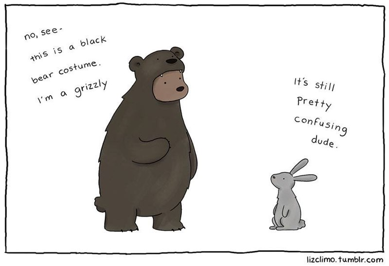 Cartoon - no, see this is a black bear costume grizzly It's still I'm a Pretty confusing dude lizclimo. tumblr.com