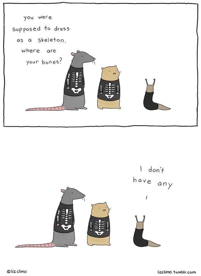 Illustration - you were Supposed to dress as a skeleton where are your bones? I don't have any liz climo lizclimo. tumblr.com 0 0