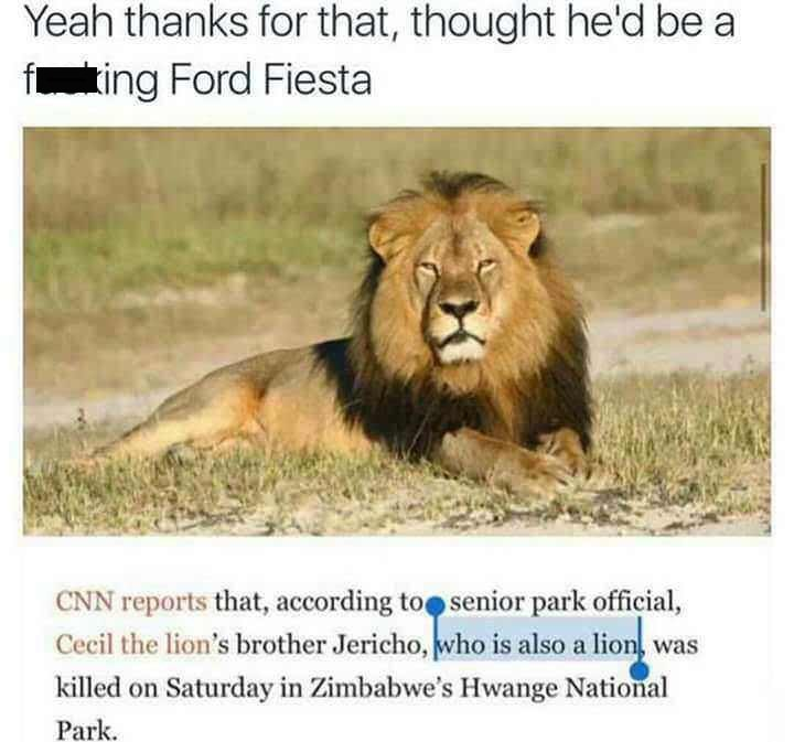 "Caption that reads, ""Yeah thanks for that, thought he'd be a f*cking Ford Fiesta"" above a pic of Cecil the lion and a news story clarifying that his brother is also a lion"