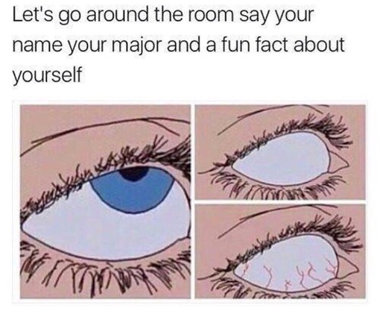 meme - Eyebrow - Let's go around the room say your name your major and a fun fact about yourself