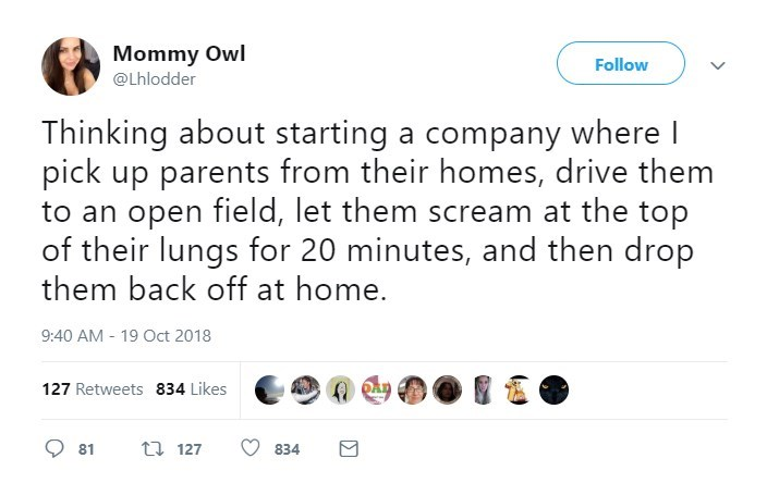 Text - Mommy Owl Follow @Lhlodder Thinking about starting a company where I pick up parents from their homes, drive them to an open field, let them scream at the top of their lungs for 20 minutes, and then drop them back off at home. 9:40 AM 19 Oct 2018 127 Retweets 834 Likes t127 81 834