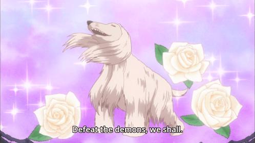 anime meme - Canidae - Defeat the demons, we shall.