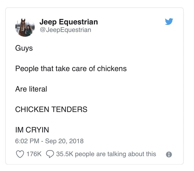tweet post about people who take care of chickens are literally chicken tenders By: @JeepEquestrian