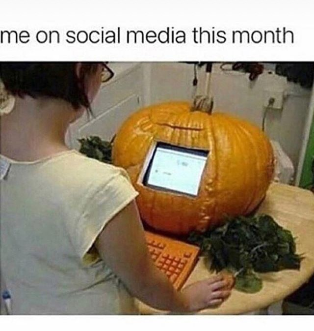 Pumpkin - me on social media this month
