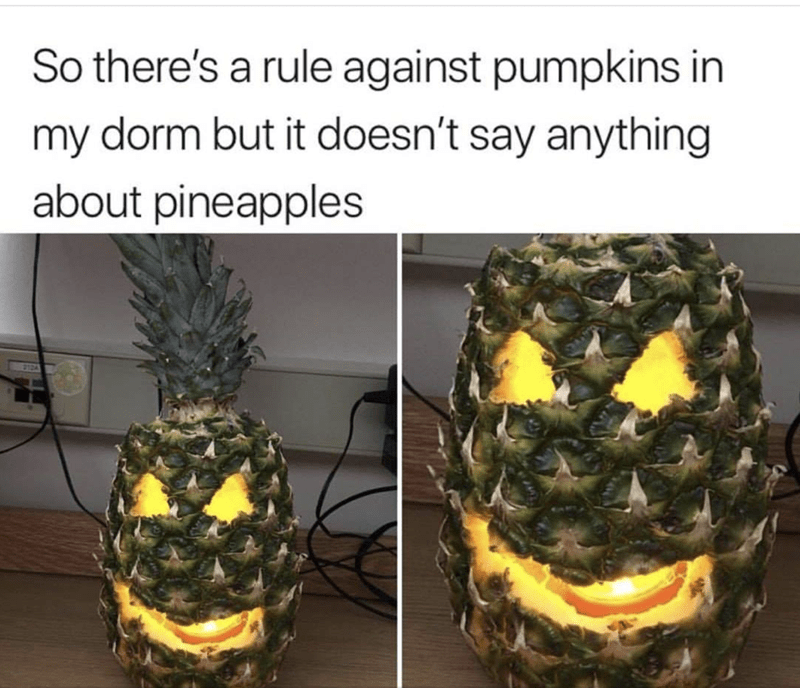 "Caption that reads, ""So there's a rule against pumpkins in my dorm but it doesn't say anything about pineapples"" above pics of a carved pineapple"