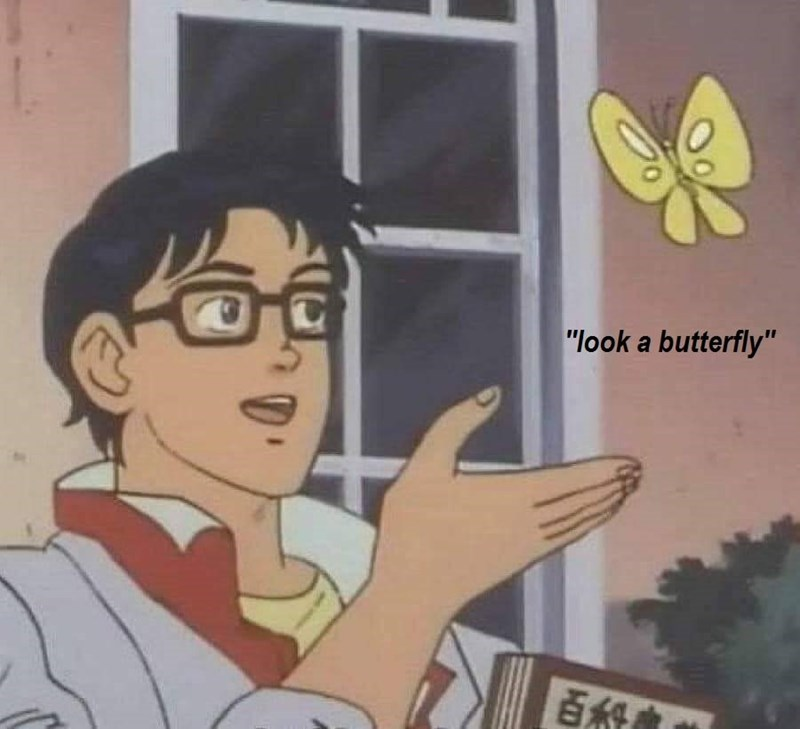 meme of a cartoon character looking at a butterfly