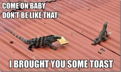 Lizard - COME ON BABY DONT BE LIKE THAT IBROUGHT YOUSOME TOAST