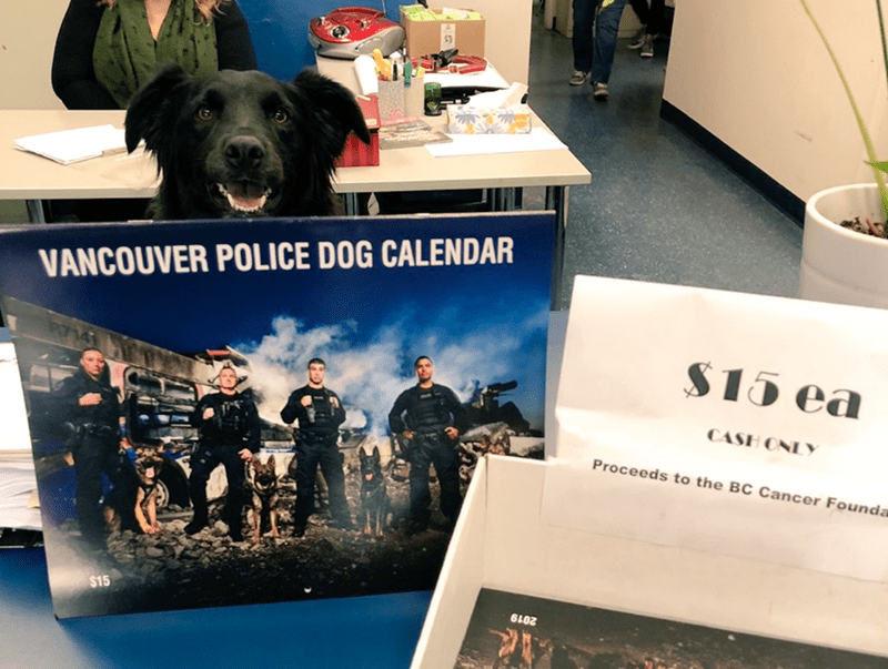 Canidae - VANCOUVER POLICE DOG CALENDAR $15 ea CASH ONLY Proceeds to the BC Cancer Founda $15