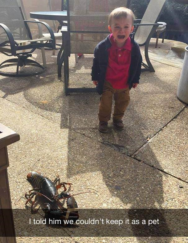 parenting meme about a boy crying next to a lobster after being told he cannot keep it