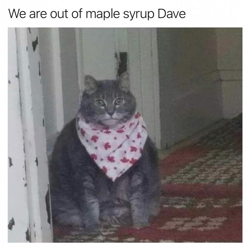 Funny meme about maple syrup