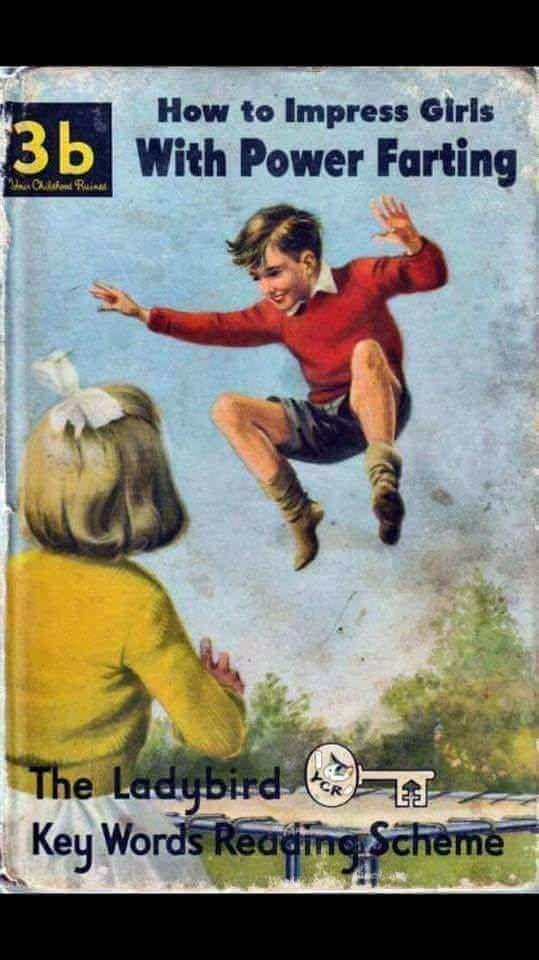 cursed_image - Poster - How to Impress Giris With Power Farting 3b Cuilshond Raina The Ladybird Key Words Readine Scheme CR