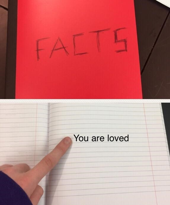wholesome meme that it's a fact that you are loved