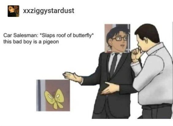 """Slaps roof of car meme"" where the car salesman says, ""*Slaps roof of butterfly* This bad boy is a pigeon"" and the car represents a butterfly"