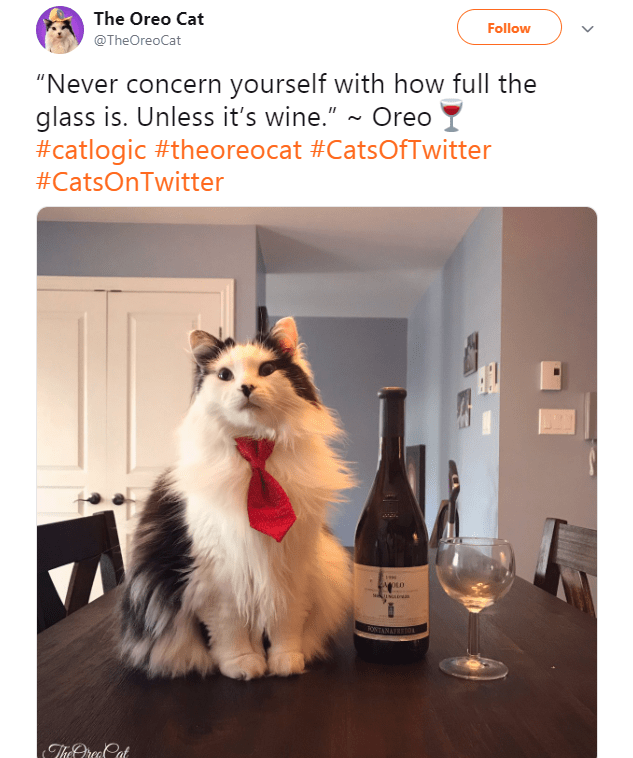 """Canidae - The Oreo Cat Follow @TheOreoCat """"Never concern yourself with how full the glass is. Unless it's wine."""" ~ Oreo #catlogic #theoreocat #CatsOfTwitter #CatsOnTwitter OLD usae ONTANATE The Orea Cat"""