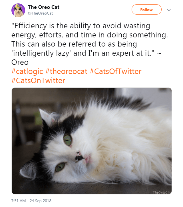 """Cat - The Oreo Cat Follow @TheOreoCat """"Efficiency is the ability to avoid wasting energy, efforts, and time in doing something This can also be referred to as being intelligently lazy' and I'm an expert at it."""" Oreo #catlogic #theoreocat #CatsOfTwitter #CatsOnTwitter Theoreocat 7:51 AM - 24 Sep 2018"""