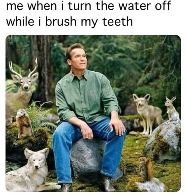 humpday meme about preserving the environment with pic of Schwarzenegger in the forest