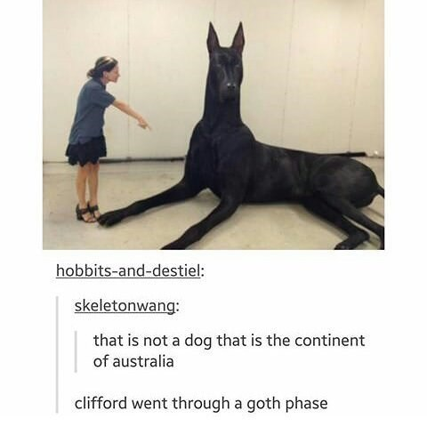 Vertebrate - hobbits-and-destiel: skeletonwang: that is not a dog that is the continent of australia clifford went through a goth phase