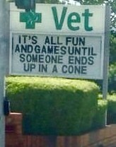 funny sign - Sign - Vet IT'S ALL FUN ANDGAMESUNTIL SOMEONE ENDS UP IN A CONE
