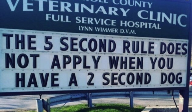 funny sign - Text - UNTY VETERINARY CLINIC FULL SERVICE HOSPITAL LYNN WIMMER D.V.M. THE 5 SECOND RULE DOES NOT APPLY WHEN YOU HAVE A 2 SECOND DOG