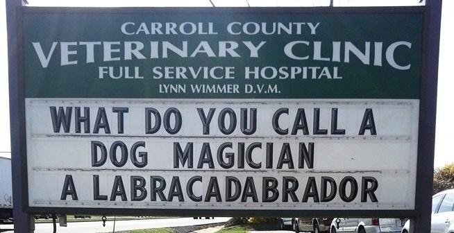 funny sign - Text - CARROLL COUNTY VETERINARY CLINIC FULL SERVICE HOSPITAL LYNN WIMMER D.V.M. WHAT DO YOU CALL A DOG MAGICIAN A LABRACADABRADOR