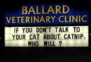 funny sign - Text - BALLARD VETERINARY CLINIC IF YOU DON'T TALK TO YOUR CAT ABOUT CATNIP, WHO WILL ?
