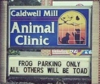 funny sign - Signage - Caldwell Mill Animal Clinic JAPANESE FROG PARKING ONLY ALL OTHERS WILL BE TOAD HS H