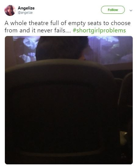 Text - Angelize @angelize Follow A whole theatre full of empty seats to choose from and it never fail... #shortgirlproblems