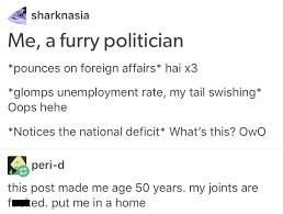 dank meme making fun of how a furry would be as a politician