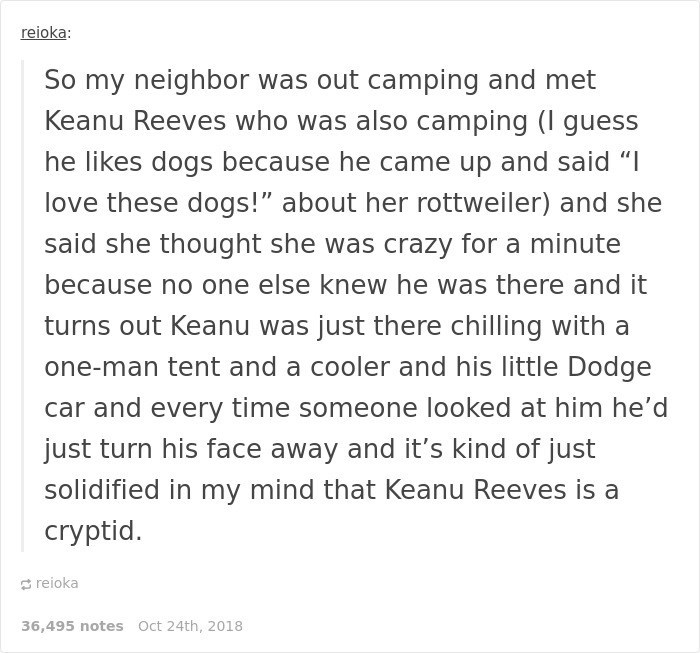 """Keanu Reeves - Text - reioka: So my neighbor was out camping and met Keanu Reeves who was also camping (I guess he likes dogs because he came up and said """"I love these dogs!"""" about her rottweiler) and she said she thought she was crazy for a minute because no one else knew he was there and it turns out Keanu was just there chilling with a one-man tent and a cooler and his little Dodge car and every time someone looked at him he'd just turn his face away and it's kind of just solidified in my min"""
