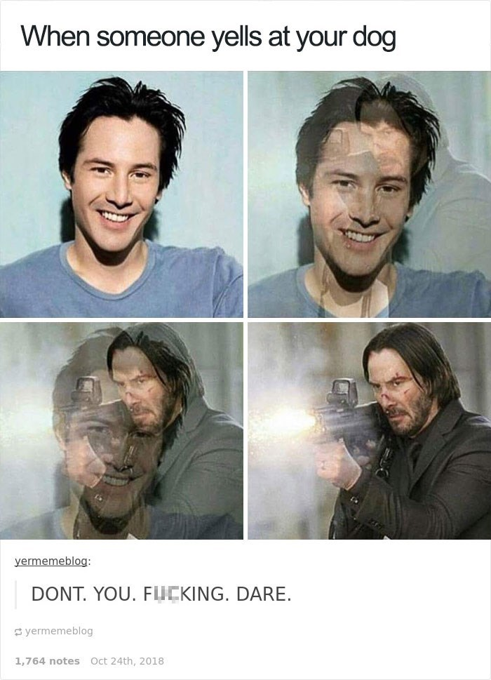 Keanu Reeves - Face - When someone yells at your dog yermemeblog: DONT. YOU. FLICKING. DARE s yermemeblog 1.764 notes Oct 24th, 2018