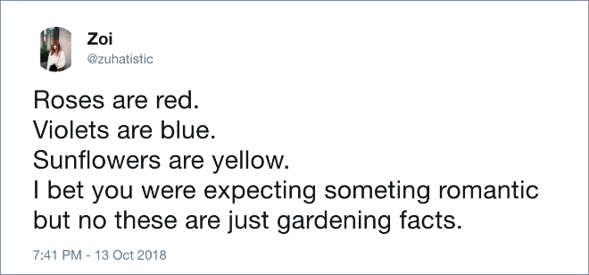 Text - Zoi @zuhatistic Roses are red Violets are blue. Sunflowers are yellow. I bet you were expecting someting romantic but no these are just gardening facts. 7:41 PM -13 Oct 2018