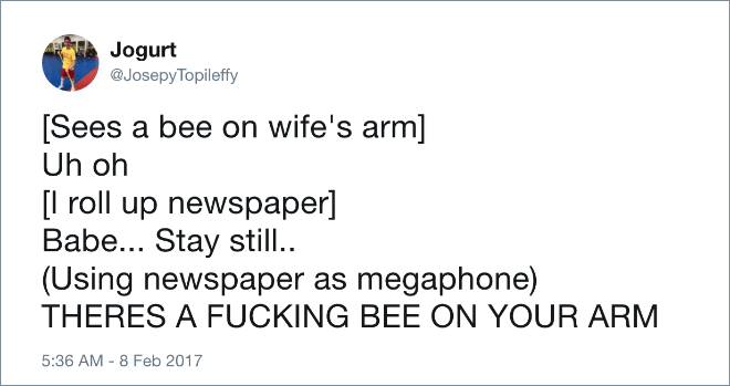 Text - Jogurt @JosepyTopileffy [Sees a bee on wife's arm] Uh oh [l roll up newspaper] Babe... Stay still. (Using newspaper as megaphone) THERES A FUCKING BEE ON YOUR ARM 5:36 AM-8 Feb 2017