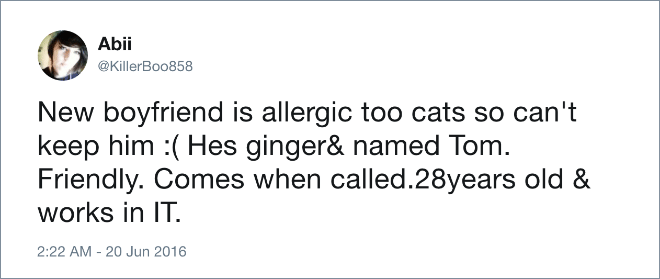 Text - Abii @KillerBoo858 New boyfriend is allergic too cats so can't keep him :Hes ginger& named Tom Friendly. Comes when called.28years old & works in IT 2:22 AM - 20 Jun 2016