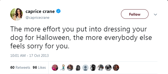 Text - caprice crane Follow @capricecrane The more effort you put into dressing your dog for Halloween, the more everybody else feels sorry for you 10:01 AM - 17 Oct 2013 60 Retweets 96 Likes