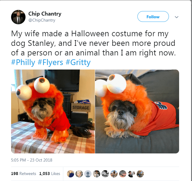 Shih tzu - Chip Chantry @ChipChantry Follow My wife made a Halloween costume for my dog Stanley, and I've never been more proud of a person or an animal than I am right now. #Philly #Flyers #Gritty STORAGE 5:05 PM -23 Oct 2018 198 Retweets 1,053 Likes