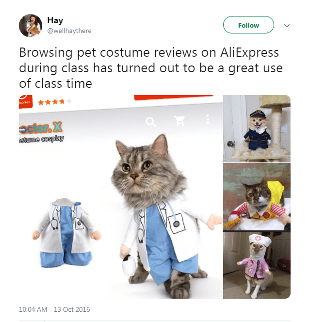 Cat - Hay Follow @wellhaythere Browsing pet costume reviews on AliExpress during class has turned out to be a great use of class time Express actar. X stume cosplay 10:04 AM - 13 Oct 2016