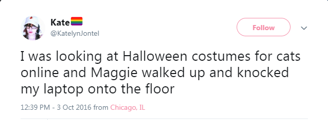 Text - Kate @KatelynJontel Follow I was looking at Halloween costumes for cats online and Maggie walked up and knocked my laptop onto the floor 12:39 PM - 3 Oct 2016 from Chicago, IL