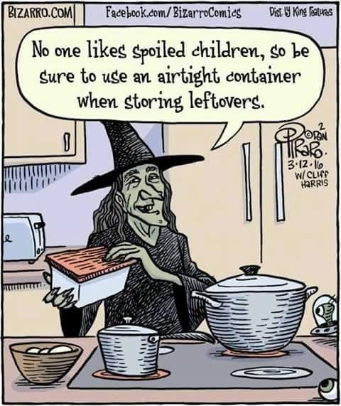 Cartoon - BIZARRO.COM Facebook.com/BizarroComies Dist Y King iaturaes No one likes spoiled children, so be sure to use an airtight container when storing leftovers 3.12.10 W/CLICP HARRIS