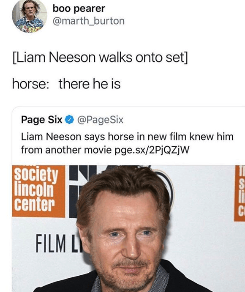 meme tweet about Liam Neeson and horse recognizing him from another movie by: @marth_burton