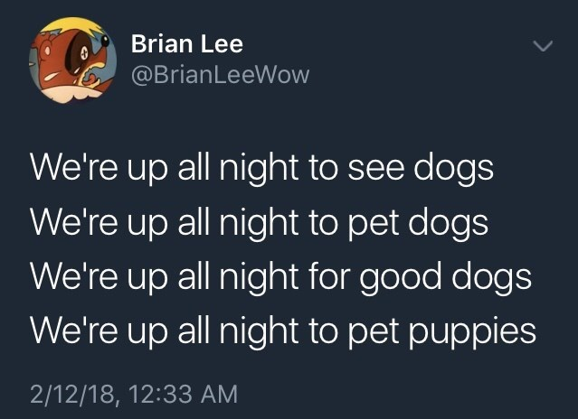 memetweet about dogs and We're up all night from song Get Lucky. by: @BrianLeeWow