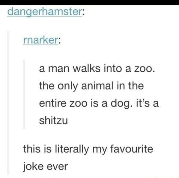 Text - dangerhamster: narker: a man walks into a zoo. the only animal in the entire zoo is a dog. it's a shitzu this is literally my favourite joke ever