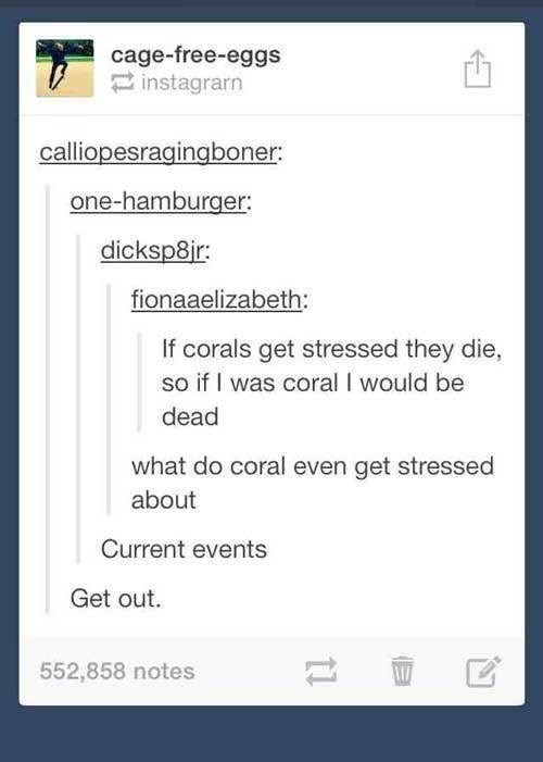 Text - cage-free-eggs instagrarn calliopesragingboner: one-hamburger: dicksp8ir: fionaaelizabeth: If corals get stressed they die, so if I was coral I would be dead what do coral even get stressed about Current events Get out. 552,858 notes 11