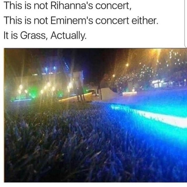 optical illusion - Text - This is not Rihanna's concert, This is not Eminem's concert either. It is Grass, Actually.