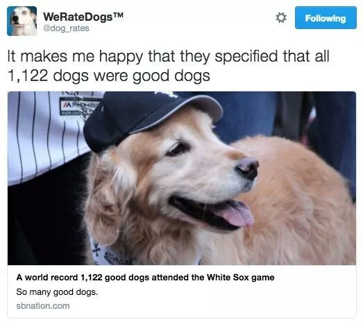 news title describes world record of good dogs attending a White Sox baseball game with picture of dog wearing baseball cap